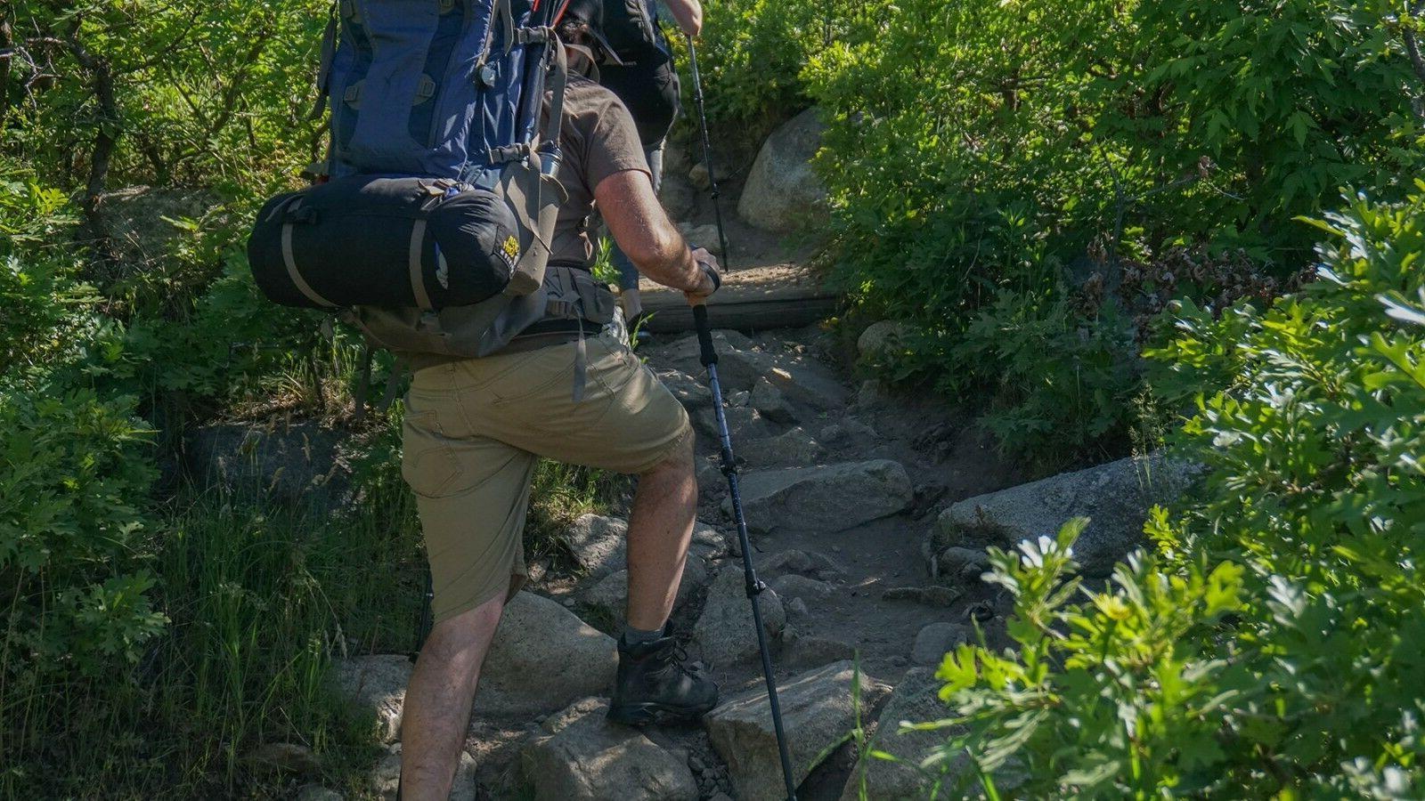 Stage Quick Trekking Hiking Cork Grips - season
