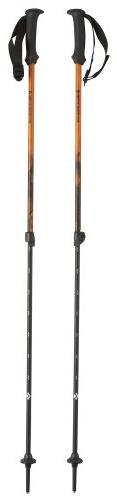 Black Diamond First Strike Walking Pole, 66-110cm