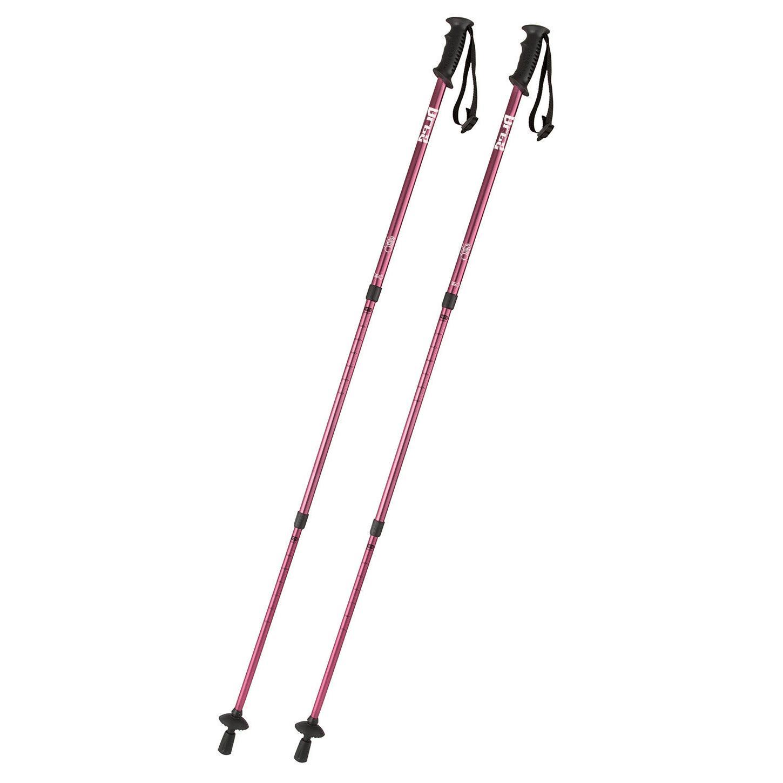 ALPS 2 Poles Walking 3-Section Adjustable