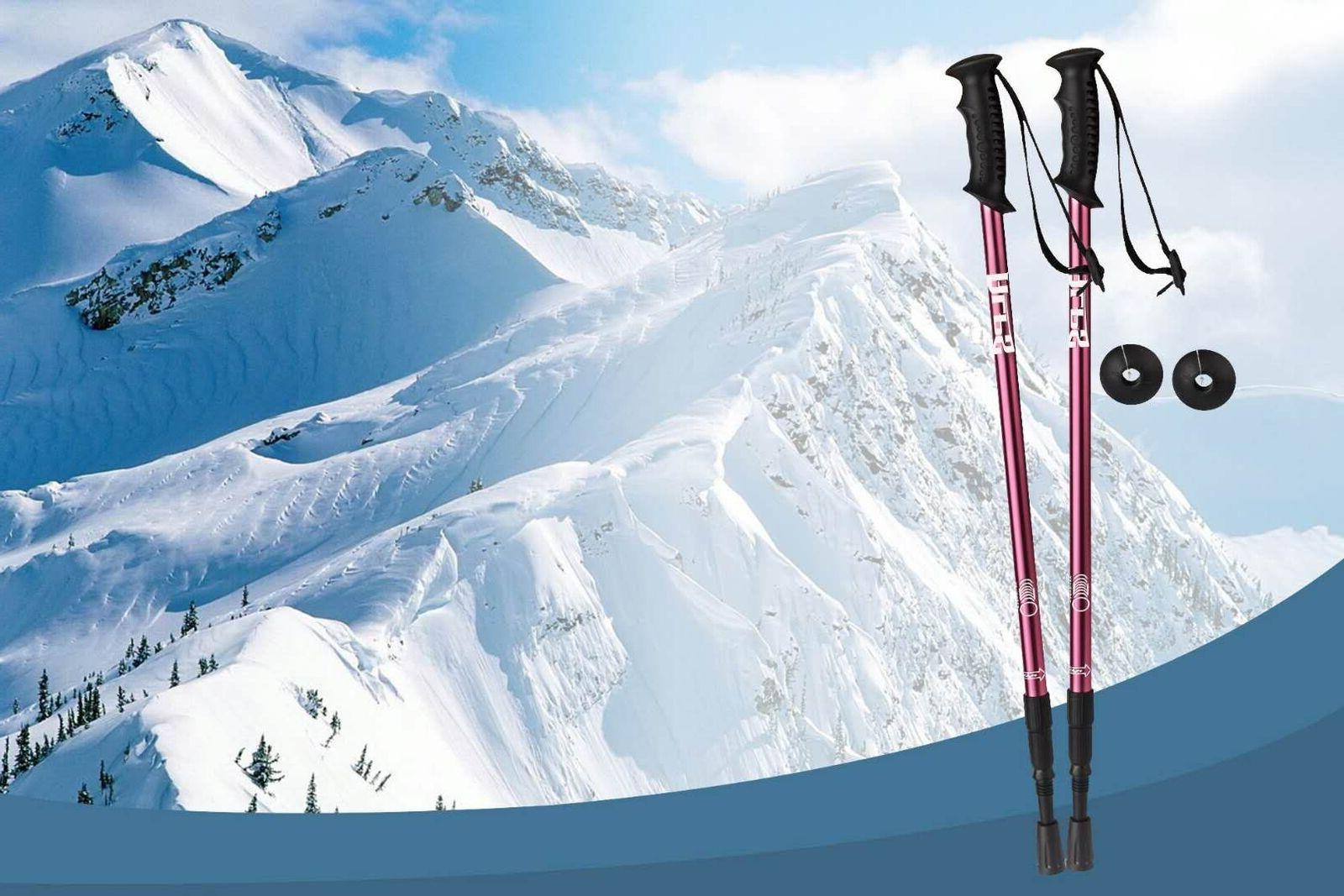 ALPS Pair Poles Walking 3-Section Adjustable