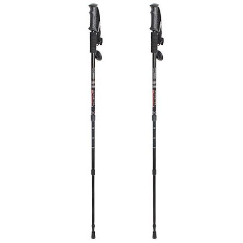 sHoPpErChOiCe Pair 2 Trekking Walking Sticks alpenstock