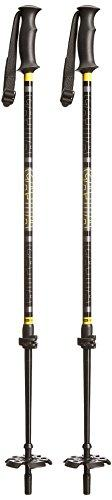 ATLAS 2 PC LOCKJAW POLES