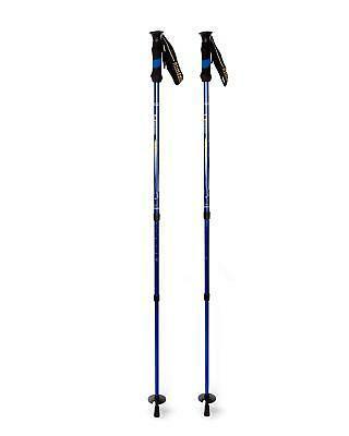 rhyolite 6061 trekking poles